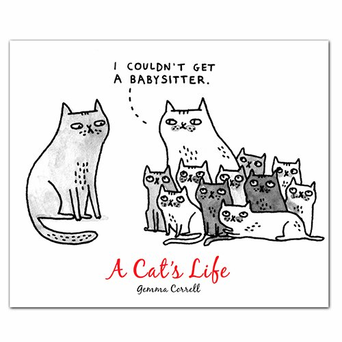 A Cat's Life: QuickNotes - Greeting, Thank You & Invitation Cards in a reuseable flip-top box decorated with modern illustrations