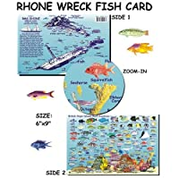 Franko Maps RMS Rhone Wreck and BVI Reef Creatures Fish ID for Scuba Divers and Snorkelers