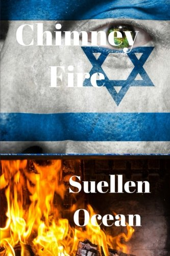 Chimney Fire: Volume 1 (The Steinberg Conspiracy)