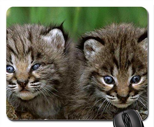 bobcat-kittens-mouse-pad-mousepad-cats-mouse-pad