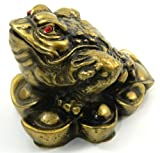 New 100mm Asian Fortune Frog Resin Figurine Chinese Coins Feng Shui Statue Decor MY1111