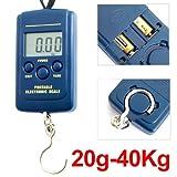 Digital Hanging Scale 40kg 88lb 1410oz Luggage Fishing