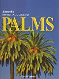 img - for By David Leaser Betrock's Essential Guide to Palms (1st First Edition) [Hardcover] book / textbook / text book