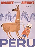 TRAVEL TOURISM PERU LLAMA ANDES BRANIFF NEW FINE ART PRINT POSTER PICTURE 30x40 CMS CC4441