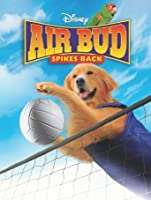Air Bud: Spikes Back [HD]