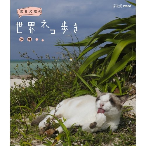 岩合光昭の世界ネコ歩き 沖縄 ブルーレイ