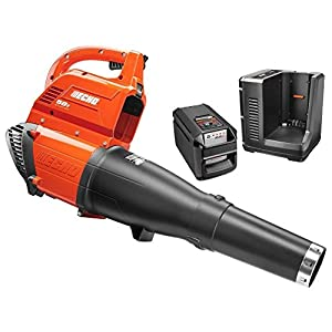 ECHO Reconditioned 120 MPH 450 CFM 58-Volt Lithium-Ion Brushless Cordless Leaf Blower