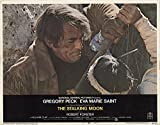 """The Stalking Moon 1968 Authentic 11"""" x 14"""" Original Lobby Card Gregory Peck Western"""