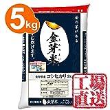 東洋ライス 金芽米(無洗米) 長野県産コシヒカリ 5kg