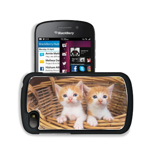 Cats Kittens Baskets Baby Animals Blackberry Sqn100 Q10 Snap Cover Premium Aluminium Design Back Plate Case Customized Made To Order Support Ready 4 13/16 Inch (123Mm) X 2 12/16 Inch (70Mm) X 8/16 Inch (13Mm) Msd Q10 Professional Metal Cases Touch Accesso front-1009908