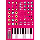 Minimoog Synthesizer Print by Dorian