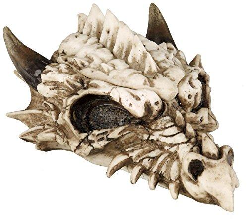 Nemesis Now Smaug Box Teschio decorativo panna