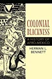 Colonial Blackness: A History of Afro-Mexico (Blacks in the Diaspora)