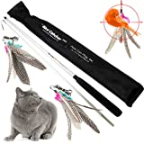The Bird Catcher Pro Pets Can Play Interactive Cat Toy Super Wand Fishing Pole Teaser with Two Feather Refill Replacement Pack