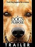 Trailer: A Dog's Purpose