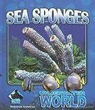 Sea Sponges (Underwater World)