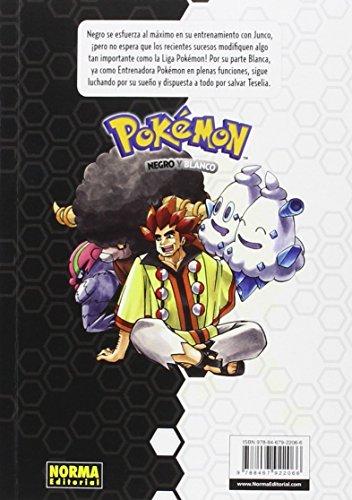 Pokemon-29-Negro-y-Blanco-4