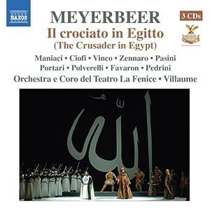 Crusader in Egypt (Il Crociato