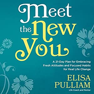 Meet the New You Audiobook