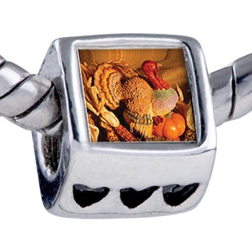 Pugster November Topaz Color Turkey Beads - Chamilia Bead & Bracelet Compatible