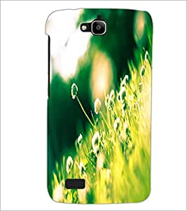 PrintDhaba Flowers D-2302 Back Case Cover for HUAWEI HONOR HOLLY (Multi-Coloured)
