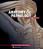 img - for Anatomy & Pathology:The World's Best Anatomical Charts Book (The World's Best Anatomical Chart Series) book / textbook / text book