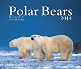 img - for Polar Bears 2014 book / textbook / text book