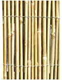 Canisse en Canne de Bambou - 4m x 2m
