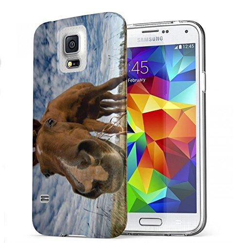 Braun Pferd, Das Kristallklare Ultradünn Gel Crystal Silikon Handyhülle Schutzhülle Handyschale mit Farbig Design für Samsung Galaxy S5 Mini