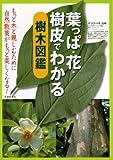 葉っぱ・花・樹皮でわかる樹木図鑑