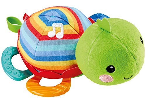 Fisher-Price Musical Teething Toy, Turtle - 1