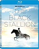 Black Stallion [Blu-ray]