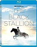 Black Stallion, The [Blu-ray]