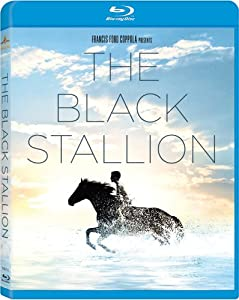 Black Stallion [Blu-ray] [1979] [US Import]