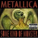 Some Kind Of Monster (UK Version) [Explicit]