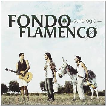 descargar surologia fondo flamenco