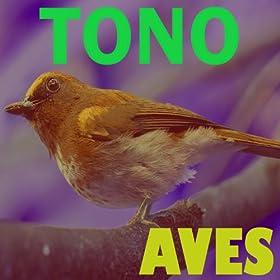 tono aves tonos para celulares august 30 2012 format mp3 be the first