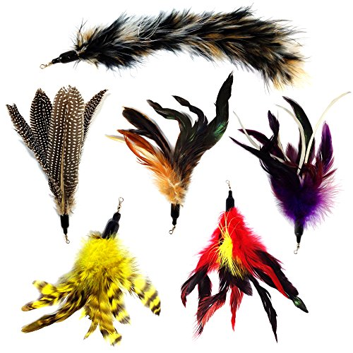 Pet Fit For Life Multi Piece Replacement Feathers Pack Plus Bonus Soft Furry Tail For Interactive Cat and Kitten Toy Wands (Advantage Multi For Kittens compare prices)