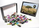 Photo Jigsaw Puzzle of Safari, Hot-air B...