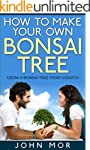 How to make your own bonsai tree: gro...