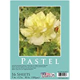 "U.S. Art Supply 9"" x 12"" Premium Pastel Paper Pad, 80 Pound (180gsm), Assorted Natural Tone Colors, Pad of 16-Sheets"