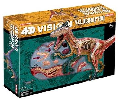 4d-vision-velociraptor-anatomy-model