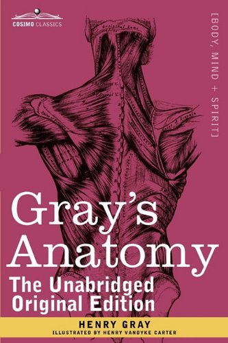 Grays Anatomy Descriptive And Surgical By Henry Gray Buy Biology