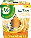 AirWick Wohlfühl Duftkerze Anti Tabac-Orange, 3er Pack (3 x 105 ml)
