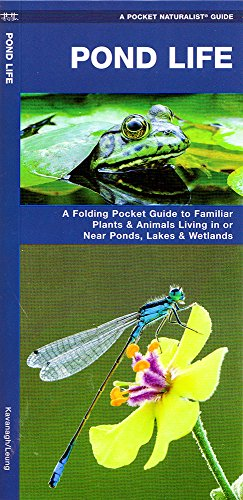 Pond life a folding pocket guide to familiar plants for Pond supplies near me