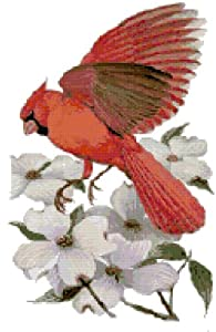 North Carolina State Bird and Flower Northern Cardinal and Flowering Dogwood Counted Cross Stitch Pattern