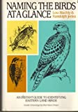 img - for Naming the Birds at a Glance by Lou Blachly (1989-01-13) book / textbook / text book