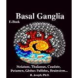 Basal Ganglia, Striatum, Thalamus: Caudate, Putamen, Globus Pallidus, Limbic Striatum, Brainstem, Parkinson's...
