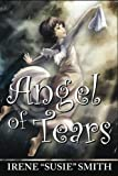 img - for Angel of Tears book / textbook / text book