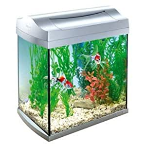 Fish tank maintenance 60 litre arcadia arc fish tank 60 for Decoration aquarium 60 litres